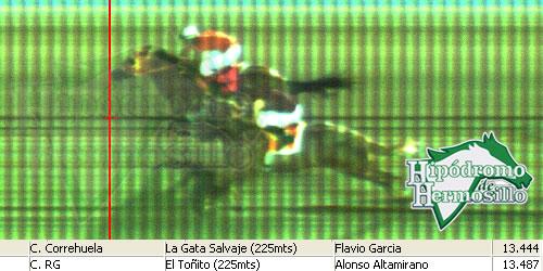 Carrera 12